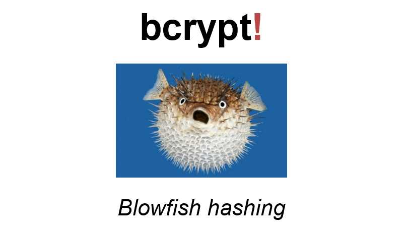 bcrypt (Blowfish hashing)