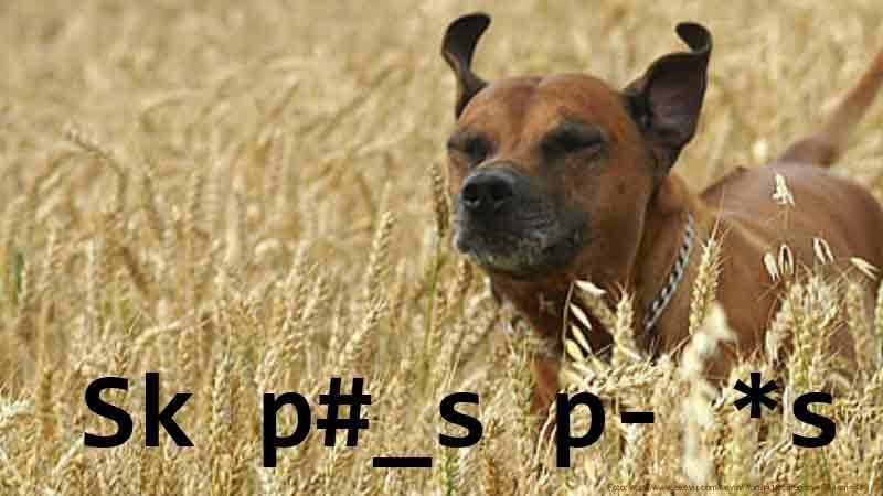 Sk p#_s p- *s
