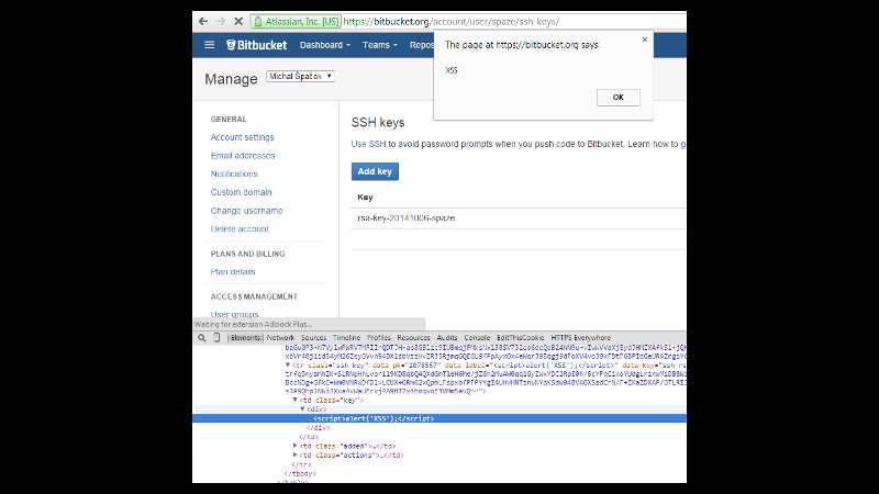 The page at https://bitbucket.org says: XSS